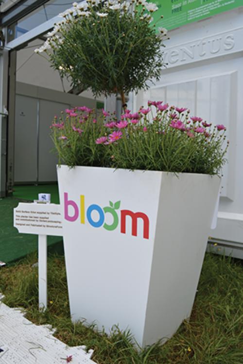 Bloom Festival | Flower Vase